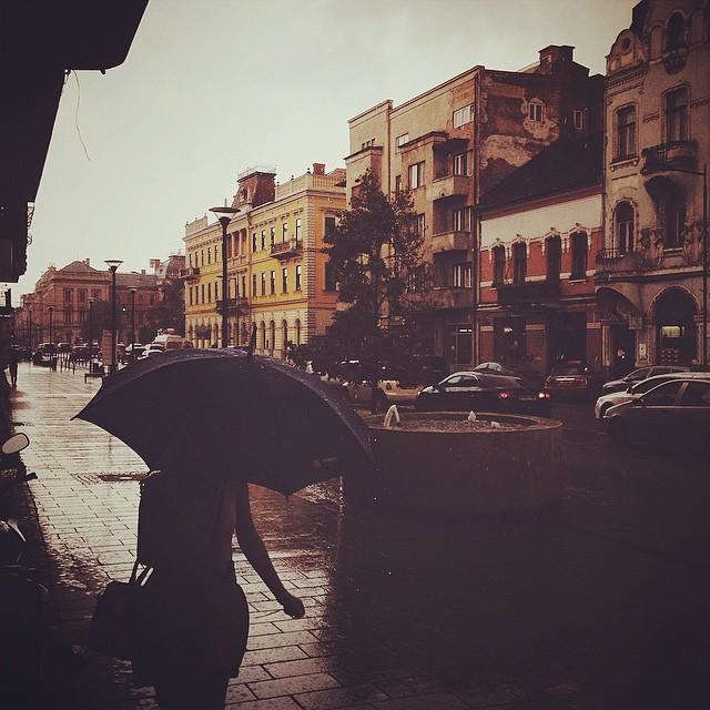 Mihail Onaca - ploi si drumuri