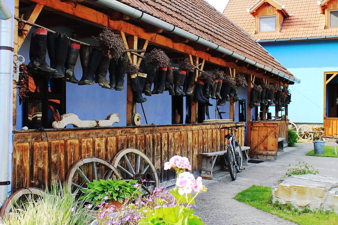 stufărișurile de la sic și muzeul dansului Cluj (14)