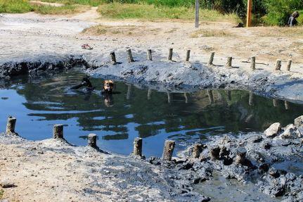 muntele de sare praid ocna de sus drumul sarii (1)