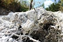 muntele de sare praid ocna de sus drumul sarii (6)