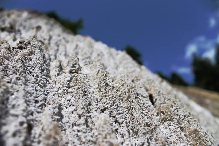 muntele de sare praid ocna de sus drumul sarii (9)