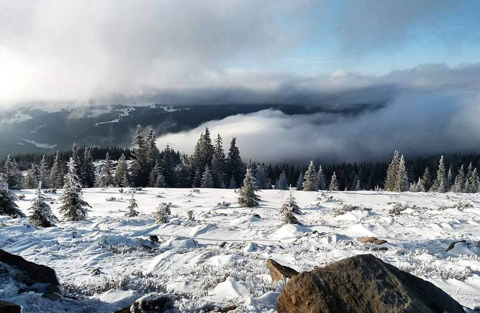 snowboard iarna (3)