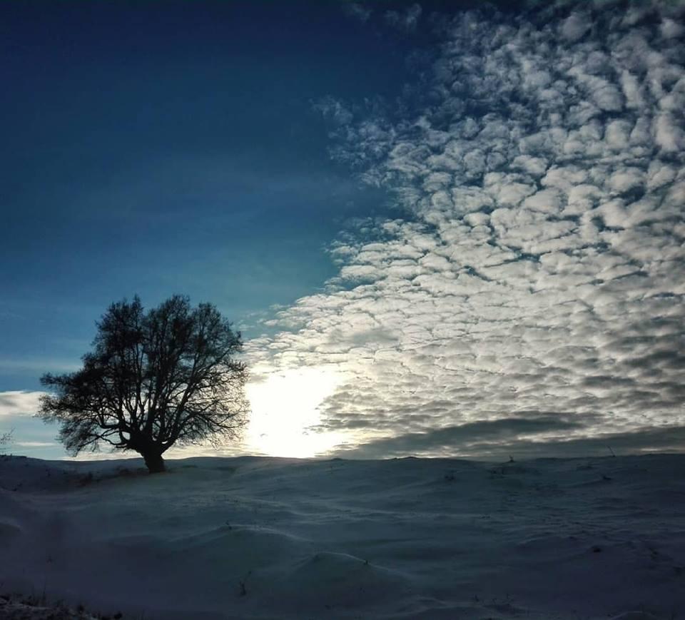 copac drag planuri 2019
